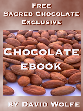 Sacred Chocolate Free Chocolate Ebook David Wolfe Exclusive
